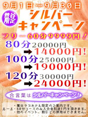 9/1~9/30秋のシルバーキャンペーン!